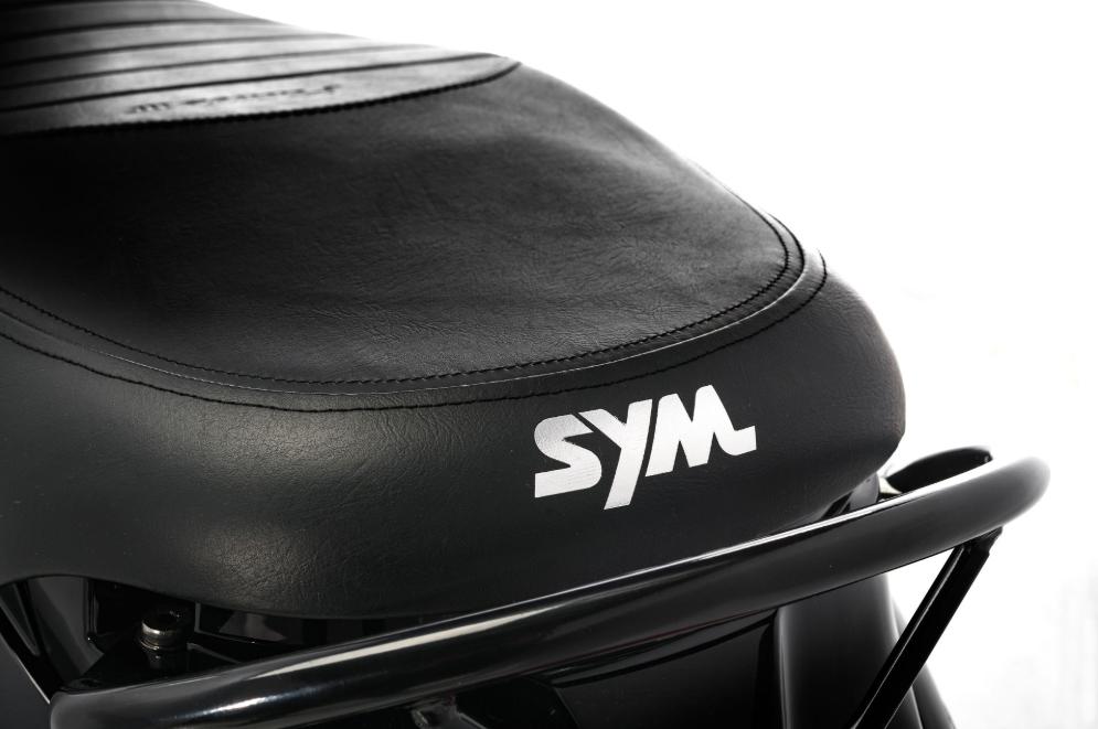 Sym-Fiddle-3-125_cc-mat_bruin