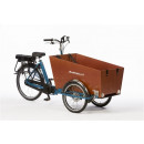 bakfietsnl-cargo-trike-classic-small-steps-middenmotor-petrol